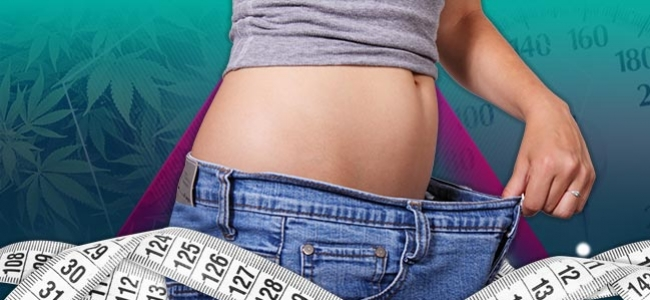 Kräuter Gewichtsabnahme