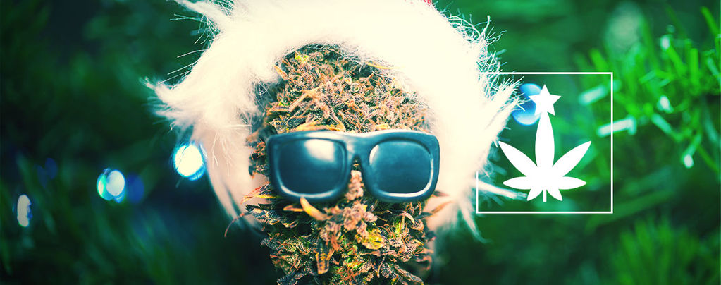 Cannabis-Themed Christmas Party