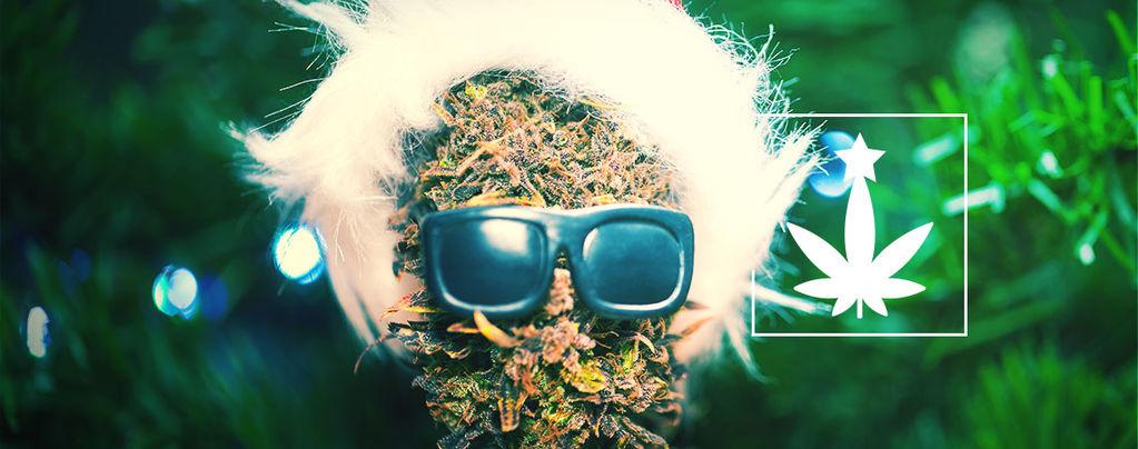 Cannabis-Themed Christmas Party