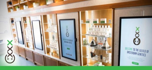 Coffeeshop Info Centre