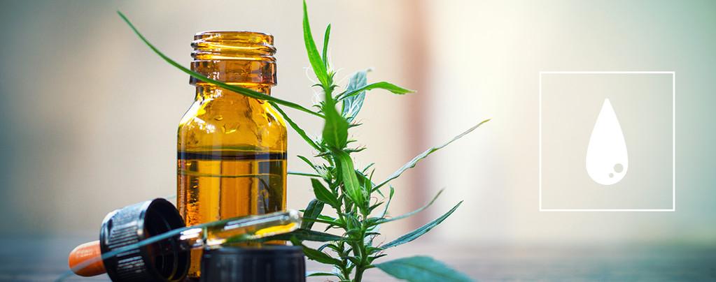 Die ultimative Anleitung für den Konsum von Cannabiskonzentraten