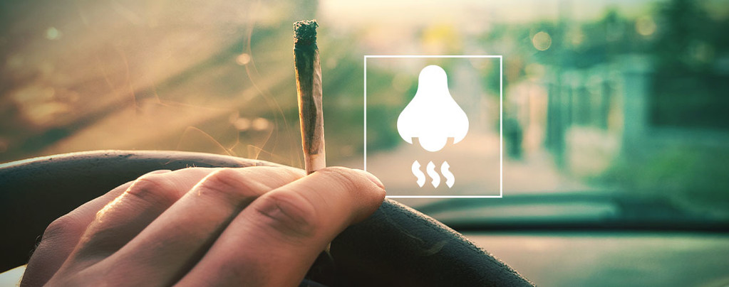 How To Eliminate Weed Smell From Your Car