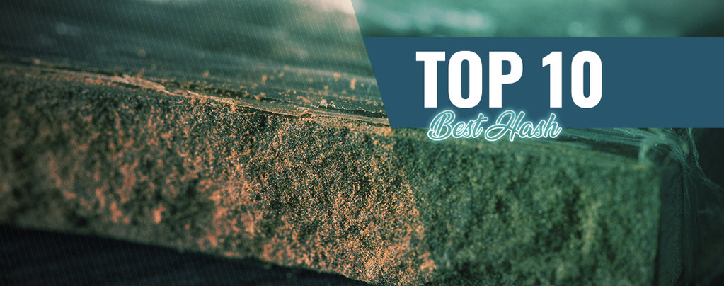 Top 10 Best Hash In Amsterdam