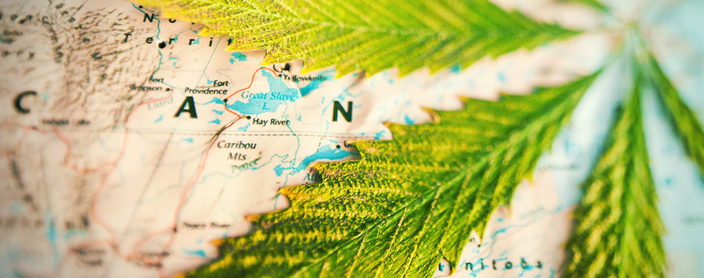 Which Countries Smoke Most Weed