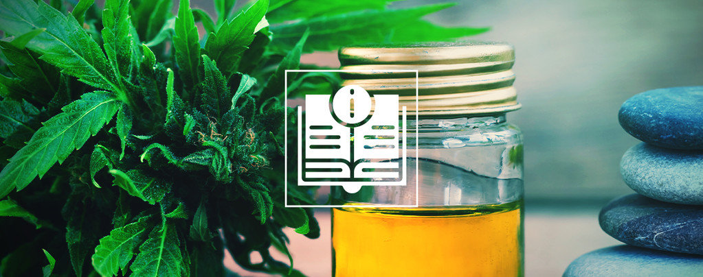 A Guide to Buying CBD Products