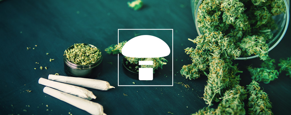 Is It Okay To Mix Weed And Mushrooms?