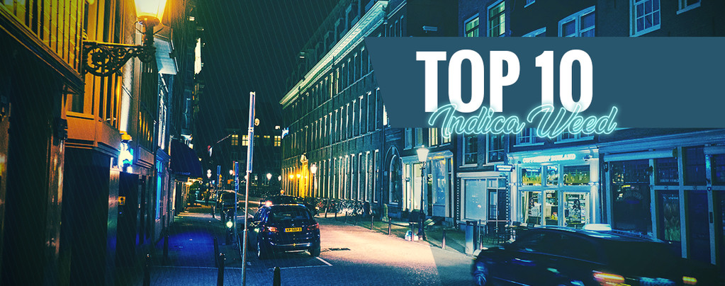 Top 10 Amsterdam Coffeeshops For Best Indica Flower