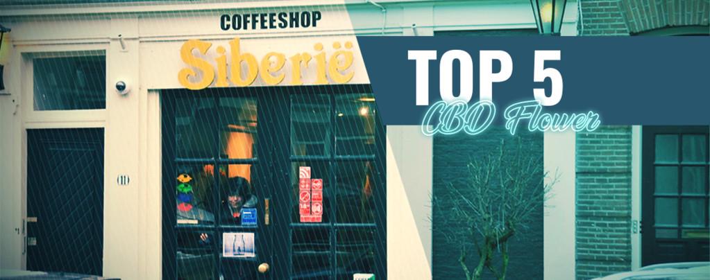 Top 5 CBD Flower Coffeeshops