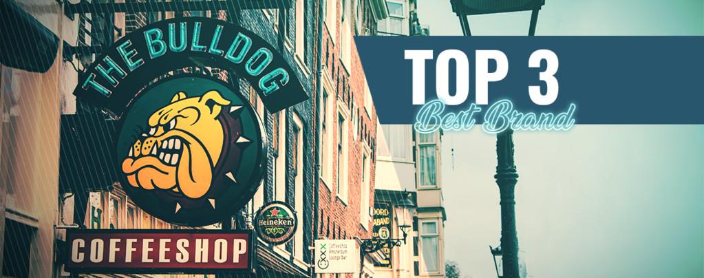 Top 3 Best Branded Coffeeshops In Amsterdam