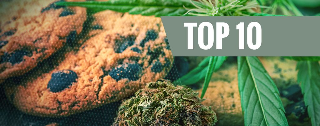 Top 10 Mistakes When Cooking With Cannabis