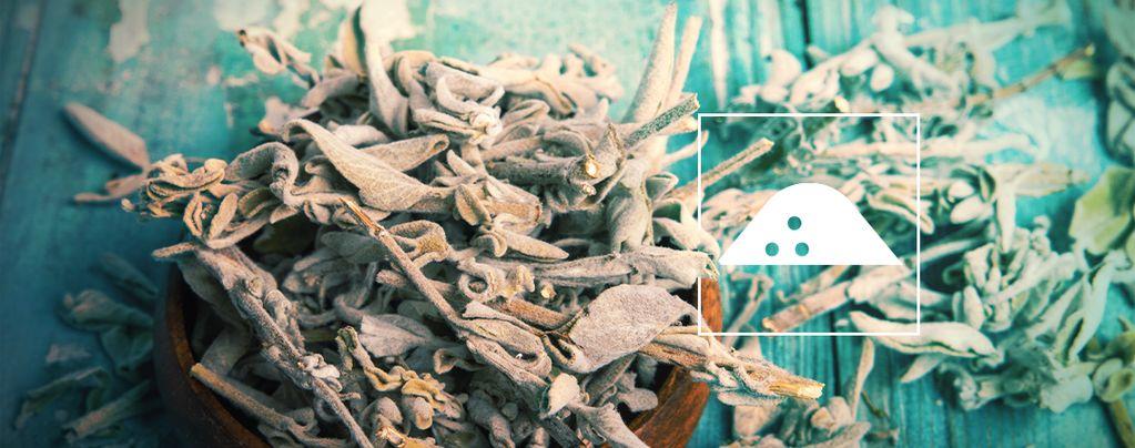 Come ottenere un estratto di Salvia divinorum dalle foglie secche