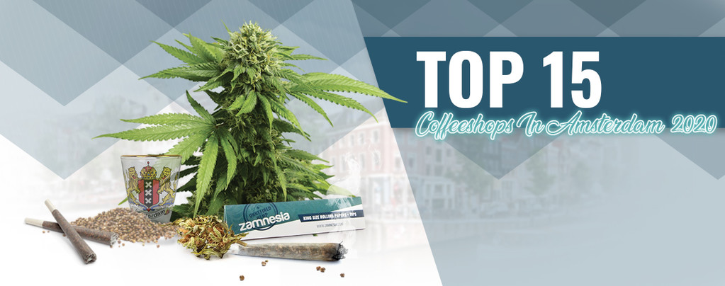 Top 10 Amsterdam Coffee Shops
