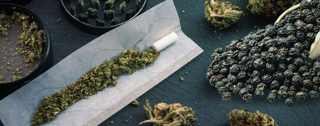 Schwarzer Pfeffer Cannabis