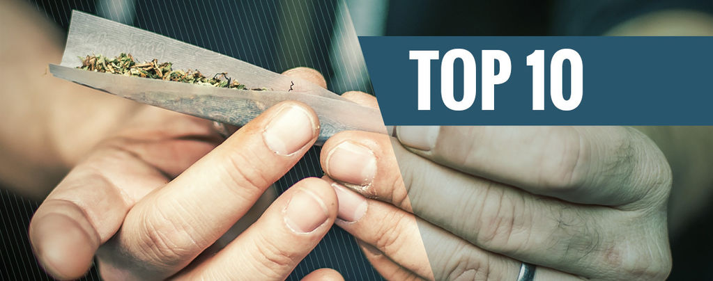 Top 10 delle migliori alternative al tabacco nelle canne