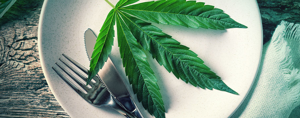 Cannabis Essen Vs. Rauchen