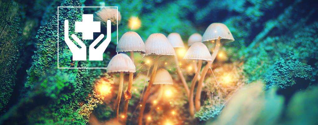 5 Surprising Benefits of Magic Mushrooms