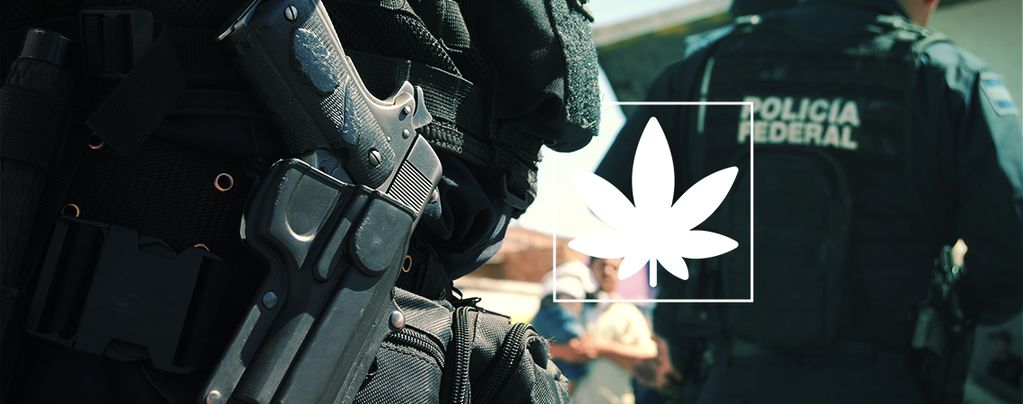 Studie: Krieg gegen Drogen ist ein kompletter Fehlschlag