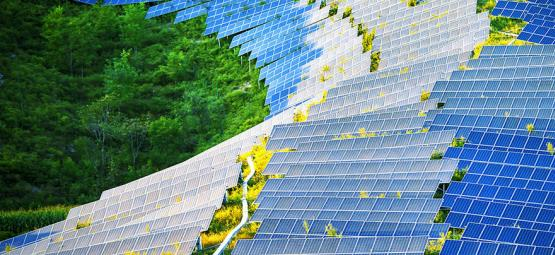 How Solar-Panels Could Revolutionise Grow Rooms