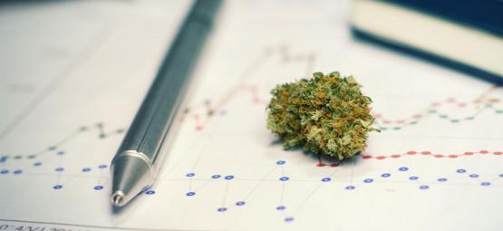 The Pros (And Cons) Of Using Cannabis For Studying Or Training