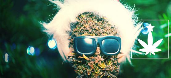 How To Throw A Cannabis-Themed Christmas Party