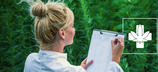 How To Choose The Right Medical Strain For You