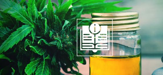 CBD Oil - Your Ultimate Guide