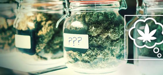 How Should We Name Cannabis Strains In The Future?