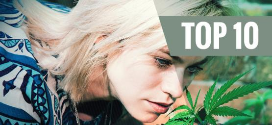 Top 10 Low-Odour Cannabis Strains To Minimise Smell