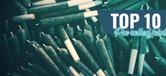 Top 10 Pre-Rolled Joints In Amsterdam