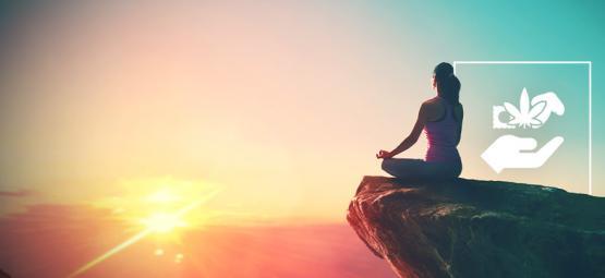 Ranking Psychedelics: Beginner To Spiritual Guru