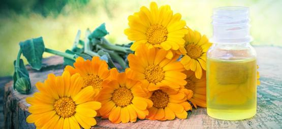 How To Make Calendula Extract & How To Use It