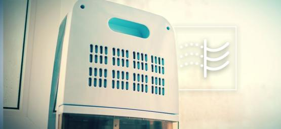 What Are Dehumidifiers And How Do You Use Them To Grow Cannabis?