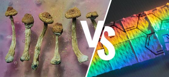 Magic Mushrooms Versus LSD: What's The Difference?