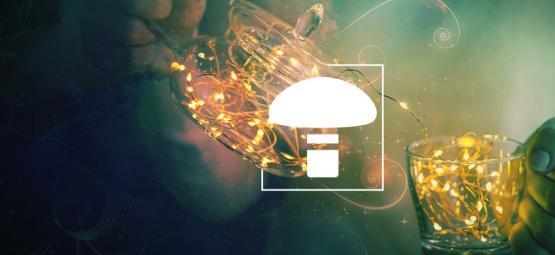 User Instructions Magic Mushroom Grow Kits Zamnesia - Zamnesia
