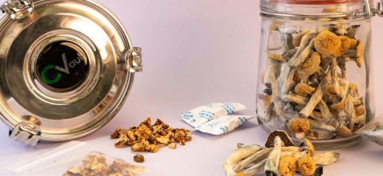 How To Store Magic Mushrooms & Truffles