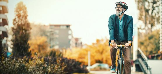Albert Hofmann: Bicycle Day