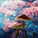Are Magic Mushrooms Inducing a 'Waking Dream'?