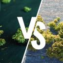 Indoors Vs. Outdoors Weed: Which Is Better?