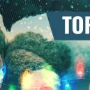 Top 5 Christmas Movies For Stoners 2016