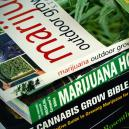 Top 6 Cannabis Growing Books