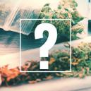 Joints, Blunts, And Spliffs: What's The Difference