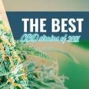 Best CBD Strains To Grow At Home