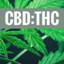 The Benefits Of Different CBD:THC Ratios