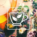 Best Herbs To Brew A Tea With