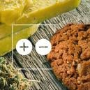 The Advantages And Disadvantages Of Edibles