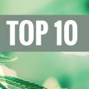 Top 10 Kush Cannabis Strains
