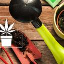 10 Indispensable Tools For The Cannabis Grower