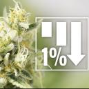 6 Cannabis Strains With 1% THC Or Less