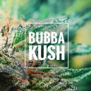 Strain Review: Bubba Kush