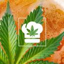 How to Make Cannabis Beer